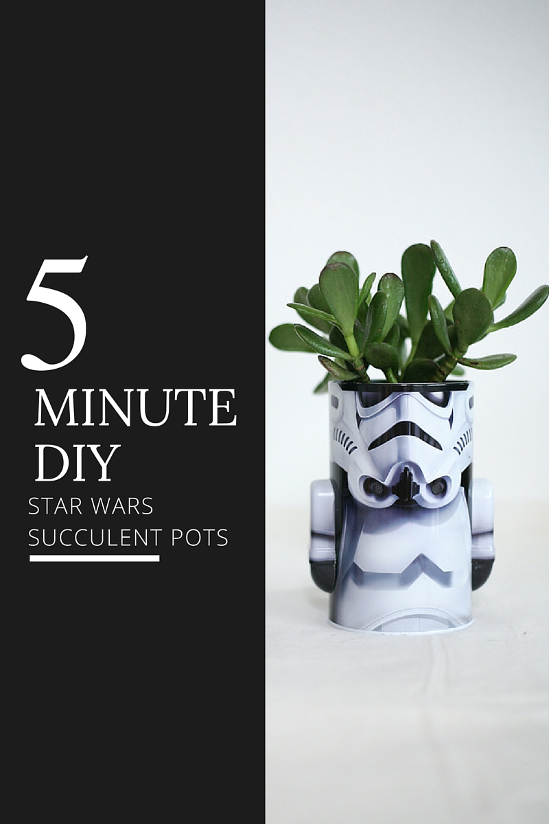 star wars succulent pots