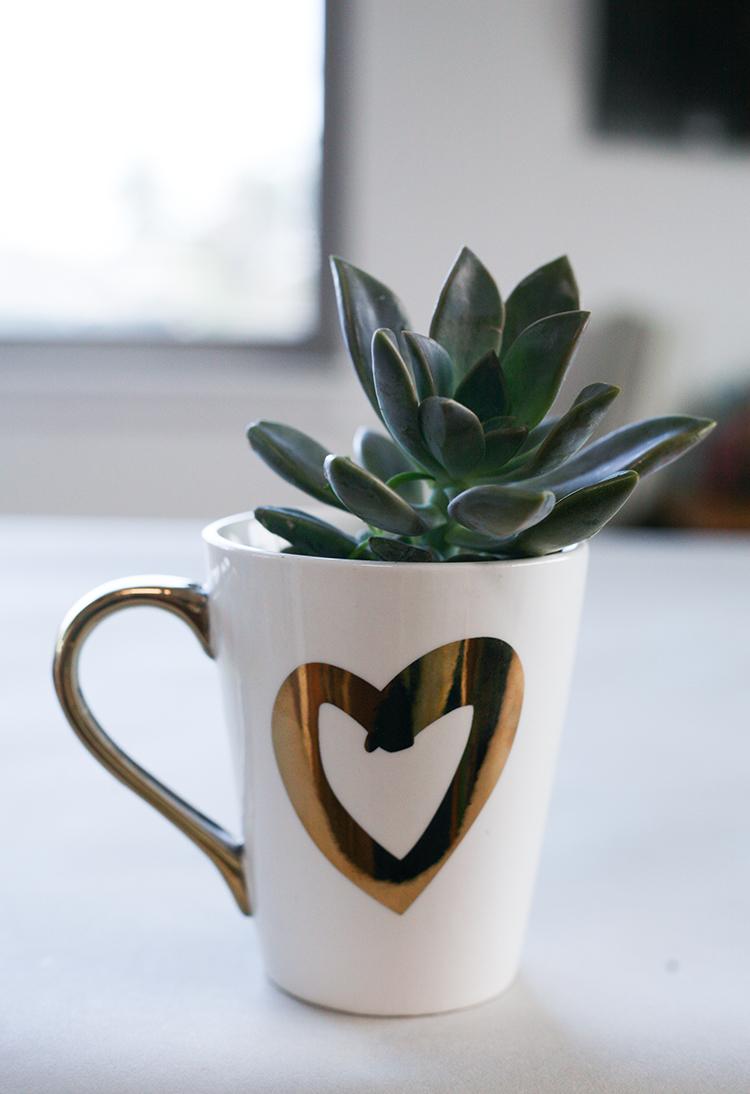 dollar-spot-planters-(1-of-1)-10
