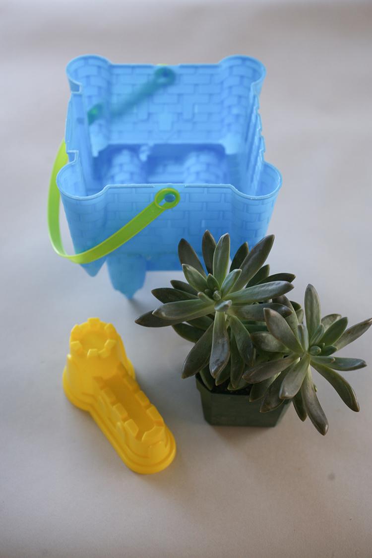 dollar-spot-planters-(1-of-1)-14