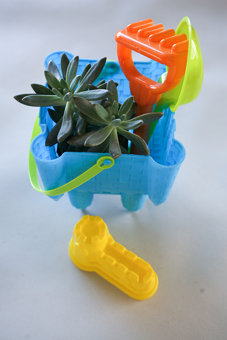 dollar-spot-planters-(1-of-1)-15