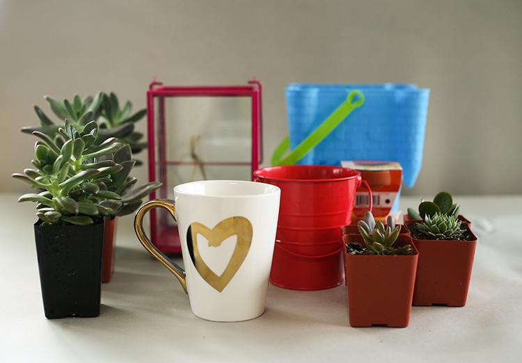dollar-spot-planters-(1-of-1)-2